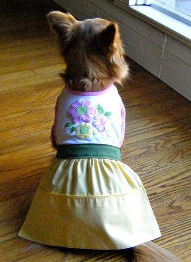 Dog bib dress with skirt sewing pattern