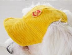 Dog baseball cap sewing pattern