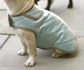 Dog coat sewing pattern