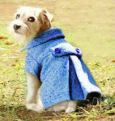 Wool dog coat with pleats sewing pattern