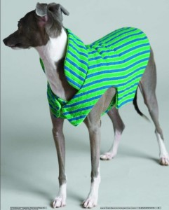 Woven striped dog coat sewing pattern